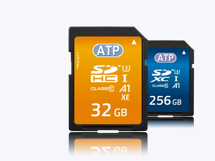 High Endurance SD cards